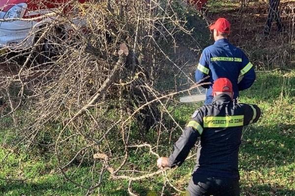 Αγρίνιο: Αγροτικό έπεσε σε αρδευτική στέρνα!