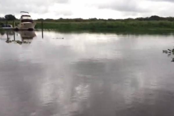 Έριξε νερό με έναν κουβά στο ποτάμι! Αυτό που έγινε 1 δευτερόλεπτο μετά σοκάρει και τον πιο ψύχραιμο!