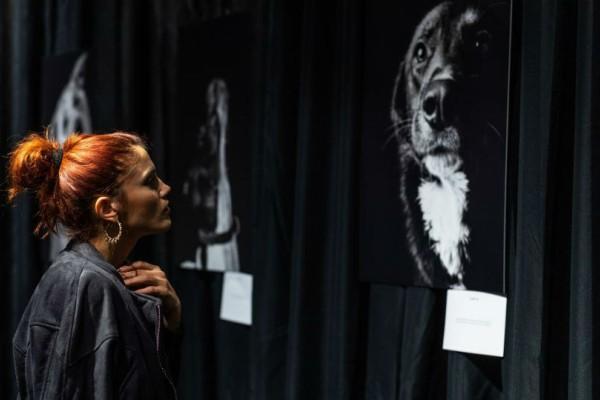 ''Eyes behind bars'': Η έκθεση ζωγραφικής που μας