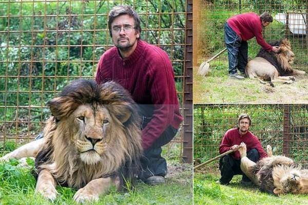 Αυτός ο άνδρας κρατούσε το λιοντάρι παράνομα φυλακισμένο! Τότε εκείνο πήρε την μοιραία εκδίκηση!