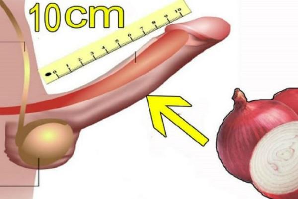 Πήρε ένα κρεμμύδι και το έτριψε στο κάτω μέρος του μορίου του! Στη συνέχεια έγινε το απίστευτο!
