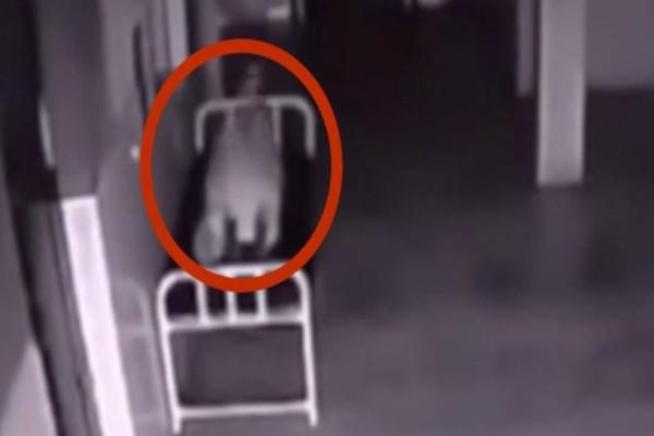Μία γυναίκα πέθανε στο νοσοκομείο. Αυτό που κατέγραψε η κάμερα ασφαλείας, θα σας ανατριχιάσει στην κυριολεξία!