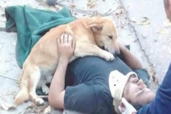 Θα συγκινηθείτε: Πιστός σκύλος δεν έφυγε από την αγκαλιά του ιδιοκτήτη του όταν αυτός ήταν ένα βήμα πριν τον θάνατο!