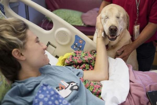 Συγκινητικό: Μια τυφλή σκυλίτσα κάνει παρέα σε άρρωστα παιδάκια σε νοσοκομείο - Αυτό που καταφέρνει θα σας βάλει σε σκέψεις!