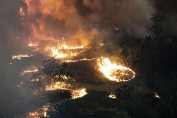 Αυστραλία: Παγκόσμια συγκίνηση με την φωτογραφία πυροσβέστη που κοιμάται στον κήπο του σπιτιού του!
