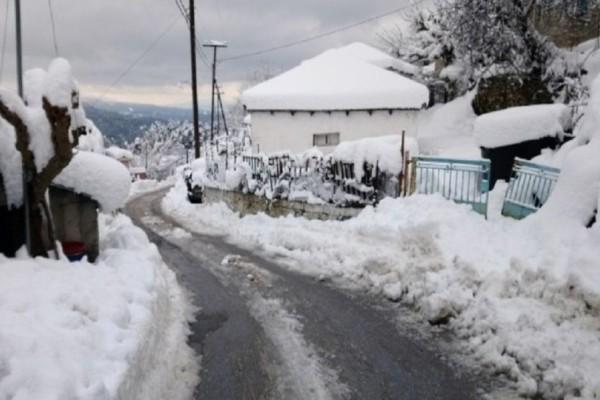 Χάος στην Εύβοια: Θαμμένοι σε 2,5 μέτρα χιόνι και χωρίς ρεύμα! (Video)