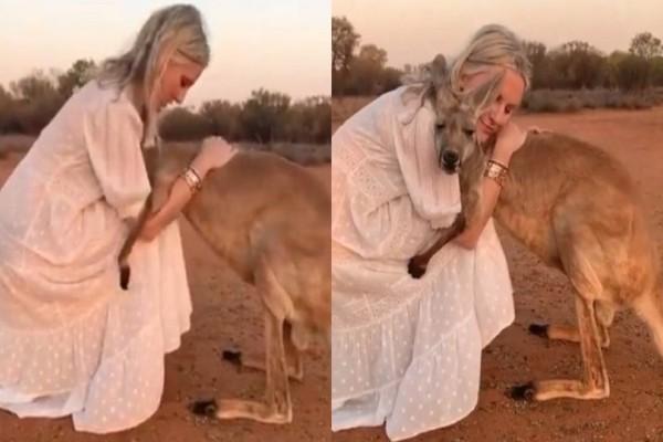 Βίντεο που «λυγίζει» και τους πιο σκληρούς: Καγκουρό πλησιάζει γυναίκα και αυτή...!