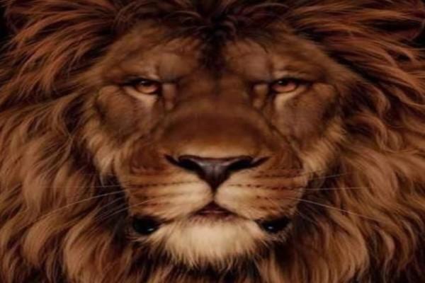 99 στους 100 ανθρώπους αδυνατούν να δουν τον σκίουρο πίσω από το λιοντάρι! Εσείς τον βλέπετε;