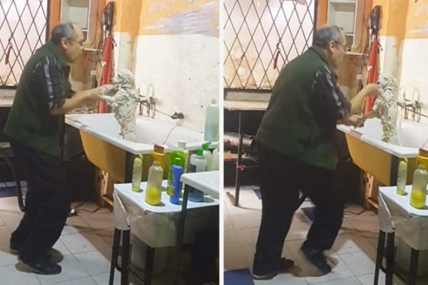 Παππούς κάνει μπάνιο τον σκύλο. Αυτό που συμβαίνει όμως παράλληλα θα σας κάνει να δακρύσετε από τα γέλια!