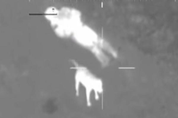 Κάμερα από ελικόπτερο κατέγραψε έναν άνδρα που είχε χαθεί στο δάσος...Πάγωσαν με αυτό που είδαν