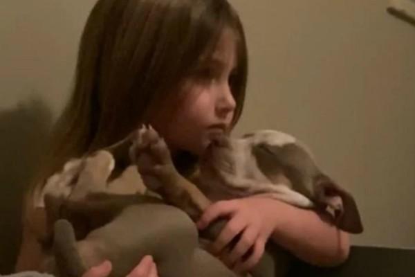 Ένα κουτάβι κάθεται στην αγκαλιά του κοριτσιού. Αυτό που κατέγραψε η κάμερα θα σας αφήσει άφωνους!