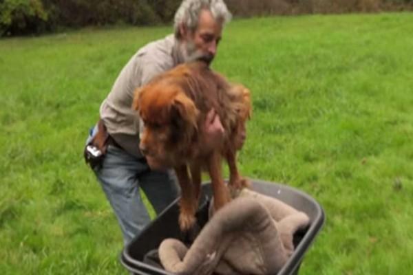 Παππούς παίρνει για πρώτη φορά αγκαλιά έναν σκύλο που ήταν αλυσοδεμένος για 14 χρόνια...Θα συγκινηθείτε από την αντίδραση του