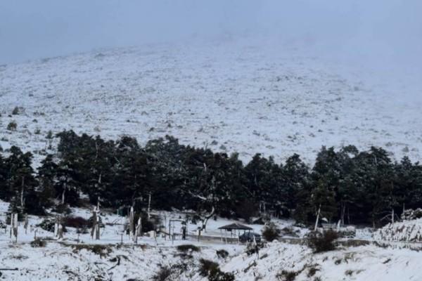 Χαμός στην Πάρνηθα: Πυκνό χιόνι παντού, διακοπή της κυκλοφορίας!