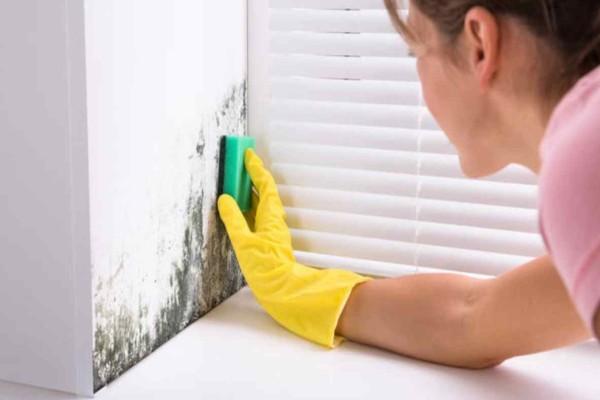 Απολύμανση τώρα: Πάρτε μαγειρική σόδα και ρίξτε την στους τοίχους - Εξοντώστε κάθε μικρόβιο