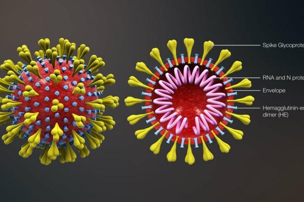 Κορωνοϊός: Αντέχει και απέναντι στη ζέστη ο φονικός ιός!