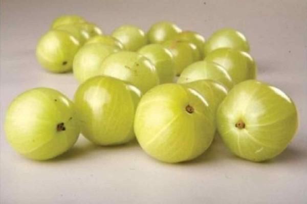 Το πιο ισχυρό φρούτο του πλανήτη! Έχει 20 φόρες περισσότερες βιταμίνες από το πορτοκάλι και προστατεύει από ιούς και παθήσεις