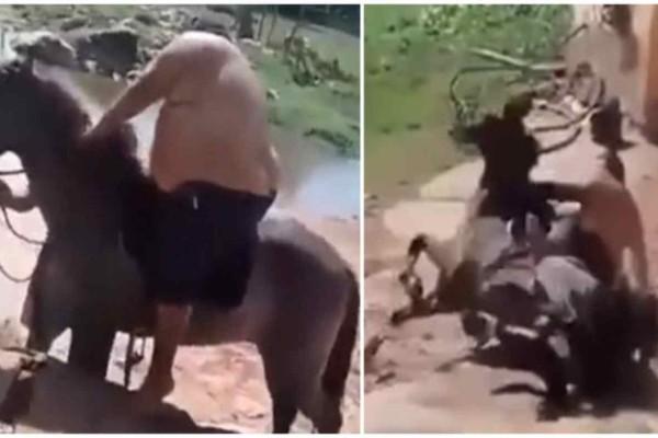 Παχύσαρκος άντρας καβάλησε άλογο κι όταν το ζώο κατέρρευσε από το βάρος  - Δείτε την απίστευτη αντίδρασή του