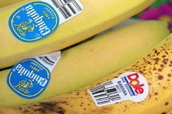 Έχετε προσέξει τα αυτοκόλλητα που υπάρχουν στα φρούτα; Όταν μάθετε θα πάθετε σοκ