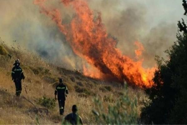 Συναγερμός στην Αρχαία Ολυμπία: Ισχυρή πυρκαγιά σε δασική έκταση!