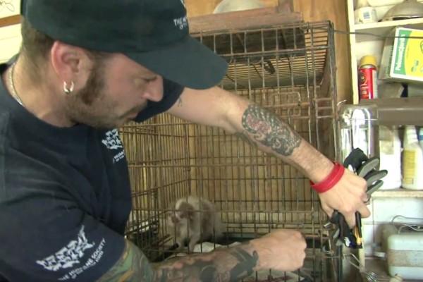 Σκυλάκι ζούσε ξεχασμένο μέσα σε ένα κλουβί και πήγε να πεθάνει από την πείνα...Η συνέχεια θα σας συγκινήσει
