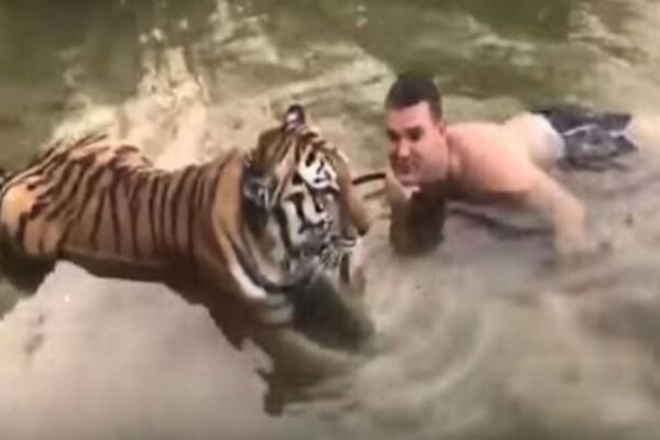 Αυτός ο άντρας βουτάει στο ποτάμι με μια τίγρη - Αυτό που ακολούθησε δεν το περίμενε κανείς!