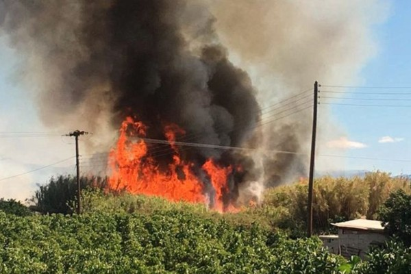 Χαμός: Φωτιά σε δασική έκταση στην Κασσάνδρα Χαλκιδικής