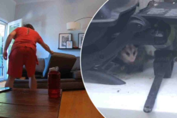 Αυτό το ζευγάρι αποφάσισε να καθαρίσει τον καναπέ του - Αυτό που είδαν όμως τους έκανε να παγώσουν