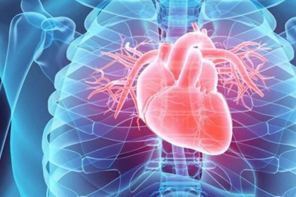 8 τροφές «θάνατος» για την καρδιά - Σταματήστε να τις τρώτε