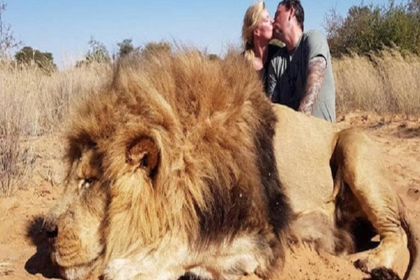 Φιλήθηκαν στο στόμα μπροστά από το σκοτωμένο λιοντάρι - Δευτερόλεπτα μετά έγινε το