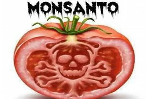Ντομάτες θάνατος: Μην φάτε ποτέ αυτές - Σκοτώνουν