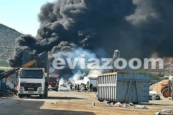 Πανικός στην Εύβοια: Φωτιά σε εργοστάσιο στην Αυλίδα