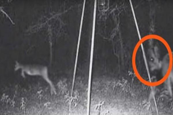 Αυτή η φωτογραφία θα σας κάνει να πιστέψετε στα φαντάσματα - Παρατηρήστε τι κρύβεται από πίσω