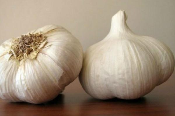 Σοκ: Το «πλεονέκτημα» του σκόρδου που κάνει μεγάλο κακό στην υγεία
