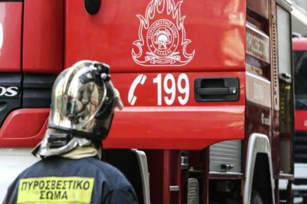 Ηλεία: Φωτιά σε δασική έκταση