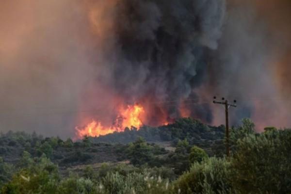 Μεγάλη φωτιά στη Δυτική Αχαΐα