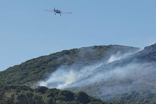 Φωτιά στη Ζάκυνθο - Απειλεί σπίτια