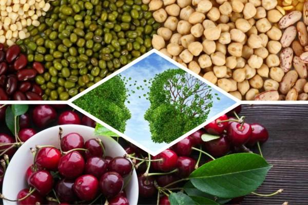 10 τροφές που προστατεύουν από το Αλτσχάιμερ και την άνοια - Δώστε προσοχή