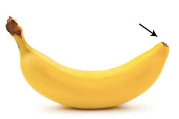 Το κάνετε λάθος: Οι μπανάνες δεν ανοίγουν από πάνω - Αυτός είναι ο σωστός τρόπος