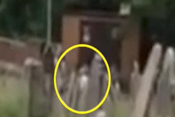 Φαντάσματα σε νεκροταφείο! Δείτε τι τράβηξε 53χρονη με την κάμερα σε απευθείας μετάδοση (Video)