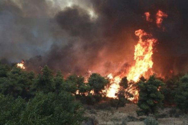 Φωτιά στην Εύβοια - Συναγερμός στην περιοχή Κυπαρίσσι (Video)