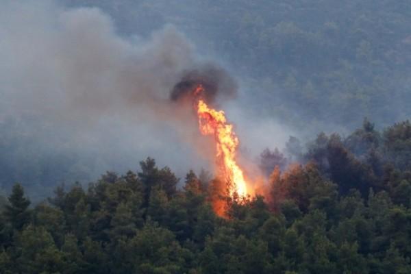 Φωτιά κοντά σε σπίτια στην Κόρινθο