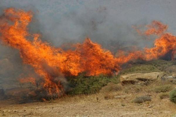 Πυρκαγιά στον Ορχομενό