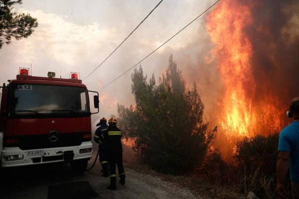 Φωτιά σε δασική έκταση του Ρεθύμνου - Επιπλέον αντίπαλος οι θυελλώδεις άνεμοι