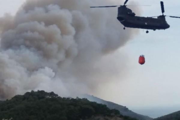 Καίγεται η Ελλάδα - Μεγάλη φωτιά και στη Βοιωτία