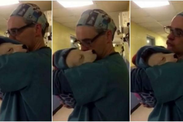 Σκύλος τρομάζει και κλαίει μετά το χειρουργείο του - Τότε ο κτηνίατρος τον αγκαλιάζει σα μωρό και...