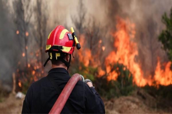 Συναγερμός: Φωτιά σε αγροτική έκταση στη Θεσσαλονίκη
