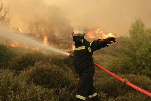 Μεγάλη πυρκαγιά στην Αρκαδία - Κατάσβεση επιχειρούν 40 πυροσβέστες με 14 οχήματα