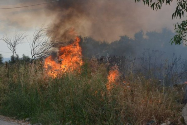 Μεγάλη φωτιά ξέσπασε στην Εύβοια