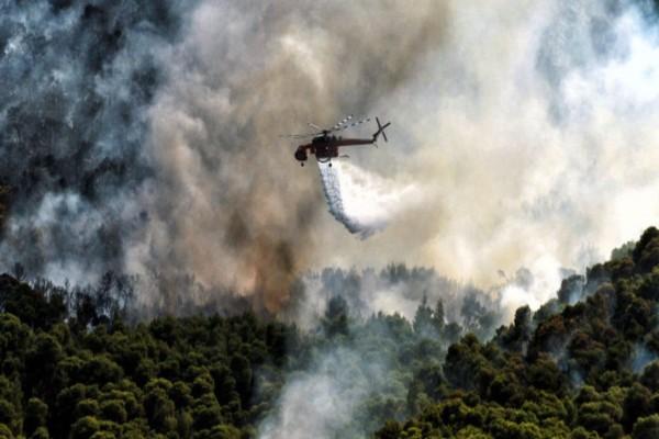 Συγκλονιστικό: Ορατή από το διάστημα η φωτιά που καίει την Κορινθία