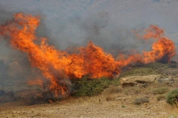 Φωτιά στην Ηλεία: Εκκενώθηκε το χωριό Χελιδόνι